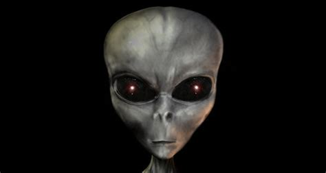 grey aliens oddx paranormal oddities