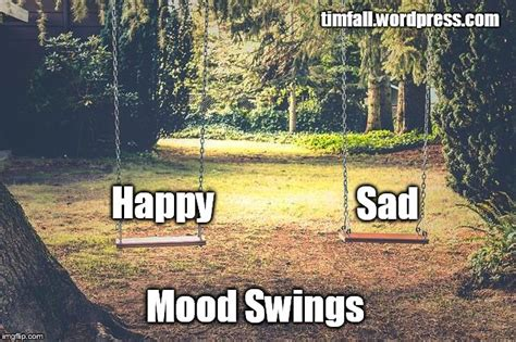 Mood Swing Meme - mood swings imgflip