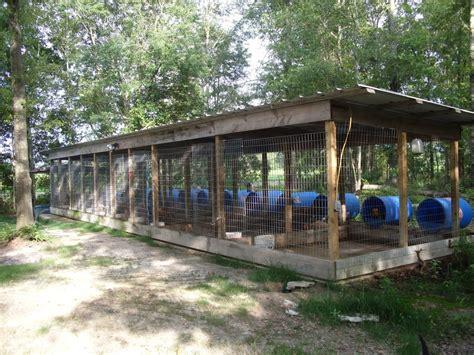 design ideas for dog kennel the real apbt dog kennel setups and designs