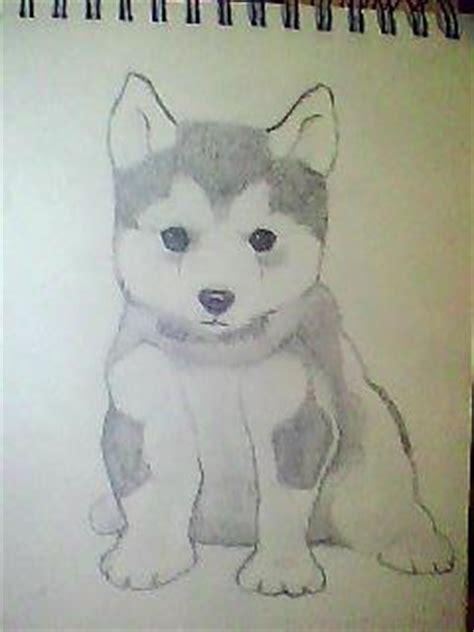 husky puppy drawing husky puppy by torayoi on deviantart