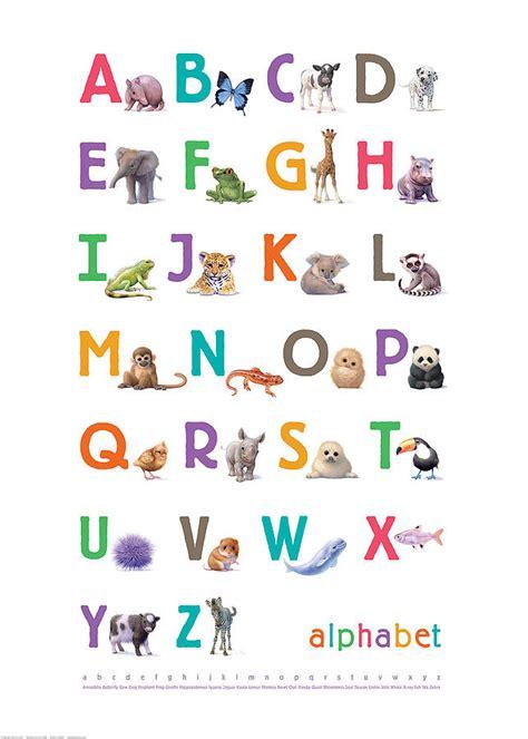 Illustrated animals bright alphabet print by little blue zebra notonthehighstreet com