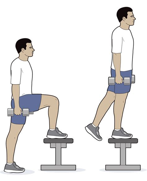 bench step ups with dumbbells dumbbell step up scouting magazine