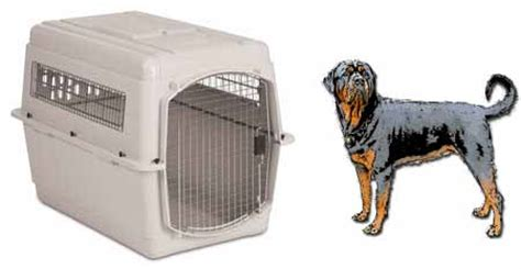 crate size for rottweiler measurement guides for airline pet carrier crate kennels dryfur 174