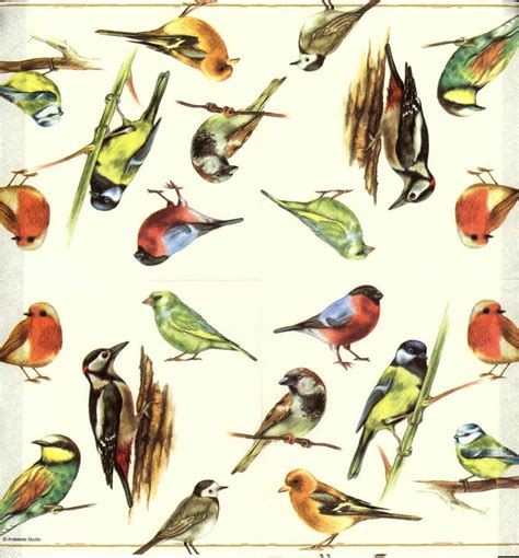 decoupage paper of birds of a feather napkin