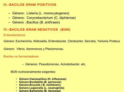 imagenes gram positivos gram positivos y negativos