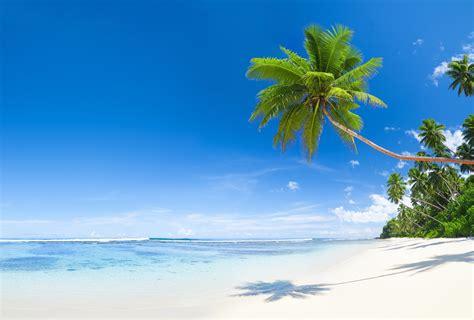 Strand Meer Bilder by Hintergrundbilder Strand Meer Natur Palmen Himmel Tropen