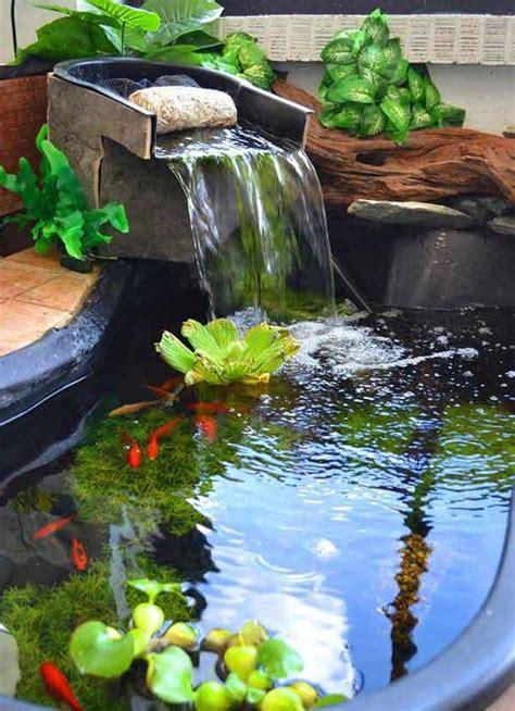 Backyard Aquarium by 22 Small Garden Or Backyard Aquarium Ideas Will Your Mind