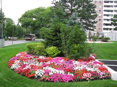 flower bed arrangement sure green landscaping and snow