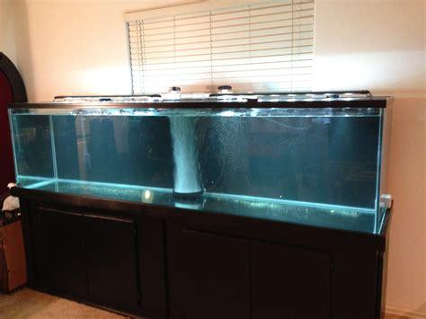 visio aquarium 240 gallon glass aquarium las vegas nv up only