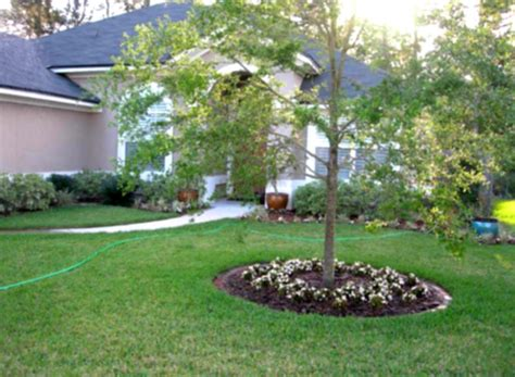 basic backyard landscaping simple green landscaping designs for modern home backyard