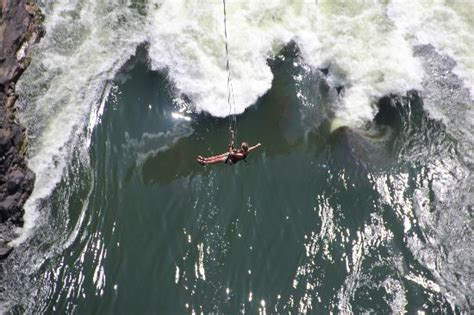 victoria falls swing swinging on the rope swing picture of zambezi river
