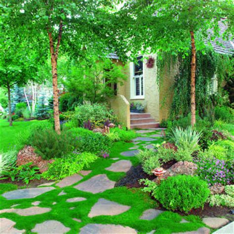 home gardening ideas cy white landscape design 50 landscaping ideas using
