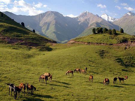 ferghana valley, uzbekistan guide and tours in ferghana