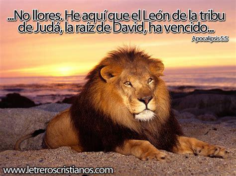 imagenes de leones con frases cristianas el le 243 n de la tribu de j 250 da ha vencido 171 letreros