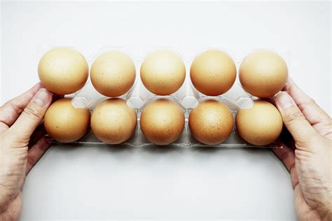 eggs at room temperature safe should you refrigerate eggs