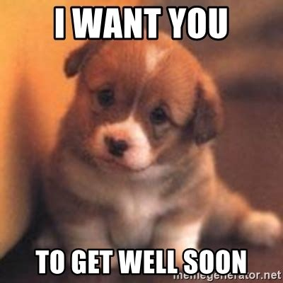 Meme Get Well Soon - i want you to get well soon cute puppy meme generator