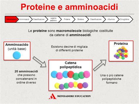 proteine e aminoacidi proteine e amminoacidi ppt scaricare