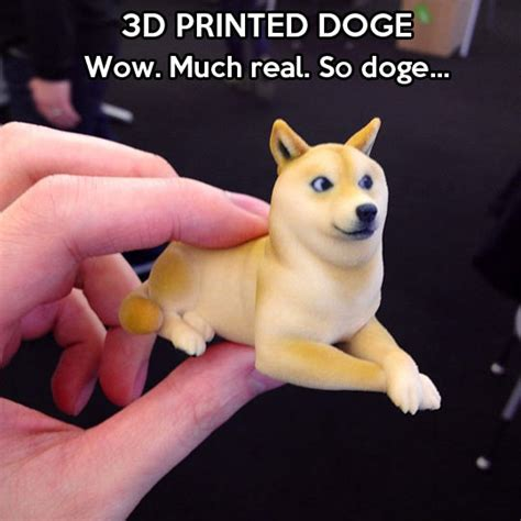 Doge Dog Meme - doge print the meta picture