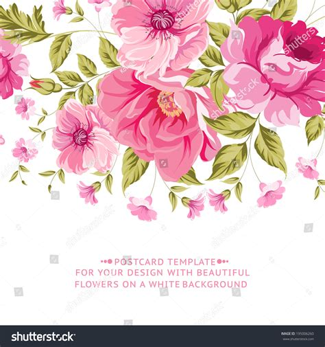flower design greeting cards ornate pink flower decoration text label stock vector