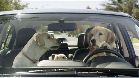 New Subaru Commercial by Song On New Subaru Commercial 2015 Html Autos Post