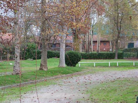 equitazione pavia pavia il maneggio illegale nel parco ticino 1 di 4