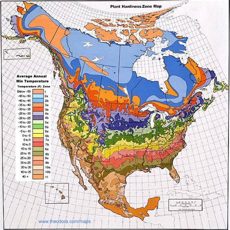 america plant zone map plant hardiness zones explained grower direct fresh cut