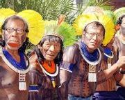 tupi guarani dicionario povo brasileiro cultura mix
