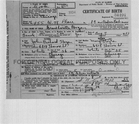 Birth Records Illinois Cook County Cook County Birth Certificate Halflifetr Info