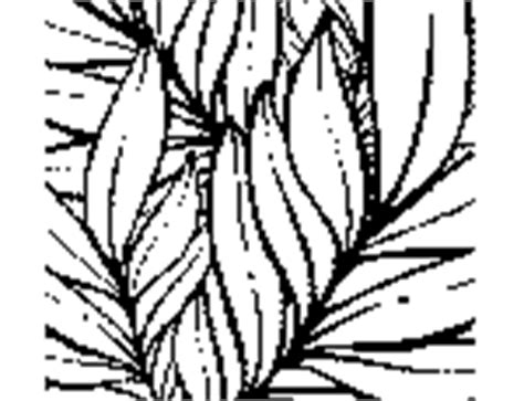 tropical leaves coloring pages plants and flowers coloring pages