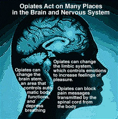 Detox Naturally From Opiates by Opiates