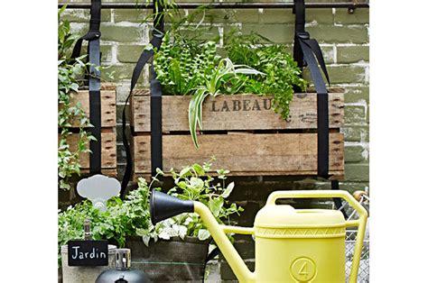 piante da terrazzo esposto a nord best piante da terrazzo esposto a nord contemporary idee