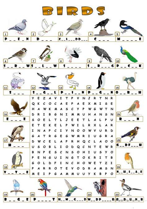 birds wordsearch worksheet free esl printable