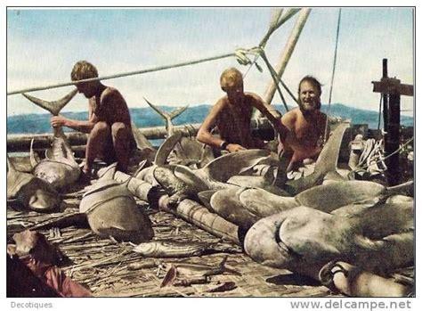 movie thor heyerdahl kon tiki expedition thor heyerdahl zwierzęce pinterest