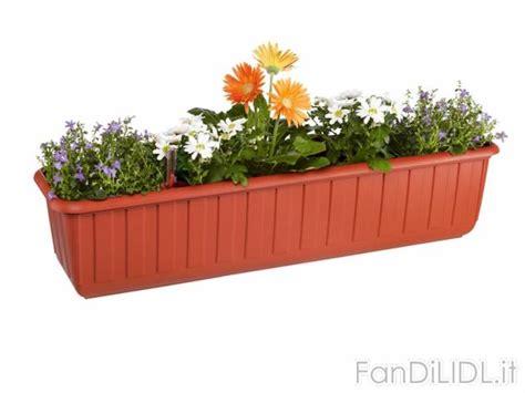 fiori lidl vaso per fiori con giardino fan di lidl