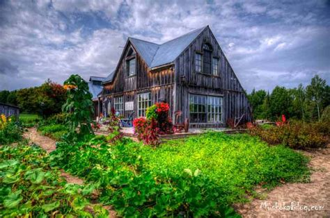 the artful gardener a muskoka transition cranberry muskoka