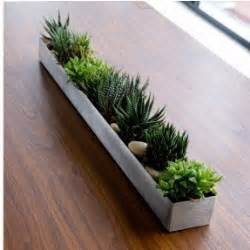 rectangular indoor planter foter