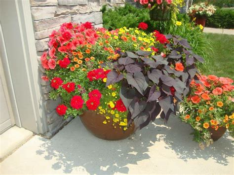 outdoor flower pots flower pot arrangements pinterest