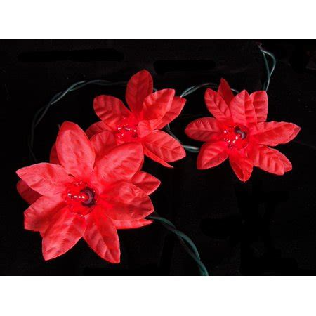 set of 35 poinsettia flower lights green wire walmart