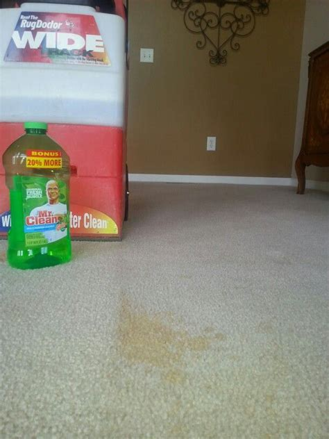 rug doctor cleaning tips best 25 rug doctor ideas on clean fabric