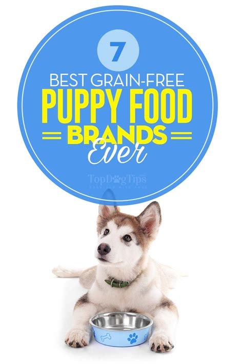 best grain free food top 7 best grain free puppy food brands in 2017