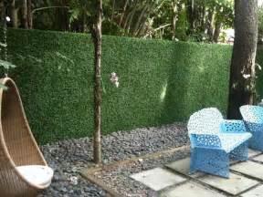 Definition Topiary - privacy fence vs privacy hedge versusbattle com