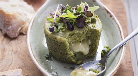 cosa cucinare con le zucchine cucinare le zucchine guida e ricette per cuocere le zucchine