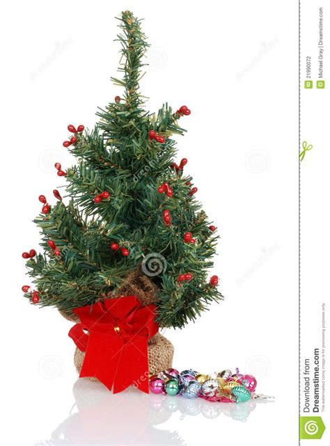 christmas tree ready to be decorated stock photo image
