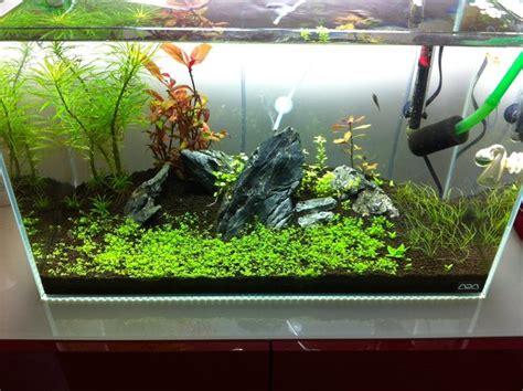besta aquarium ikea besta stand the planted tank forum