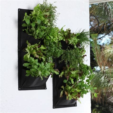 Vertical Herb Planter by Salad And Herb Vertical Planter Outdoor