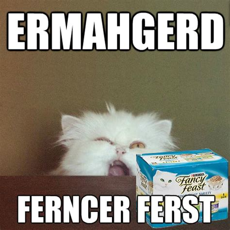 Fancy Feast Meme - ermahgerd gersebermps talkingship video games movies
