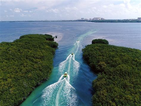 speed boat jungle tour cancun speed boat jungle tour cancun amstar excursions