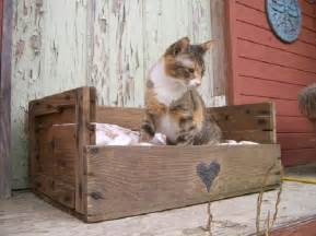 cat bed pallet furniture ideas stroovi