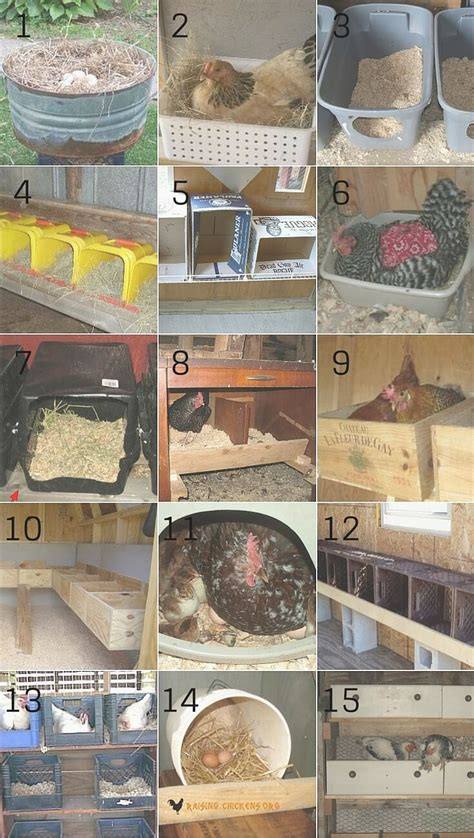 nest box low no cost nest boxes