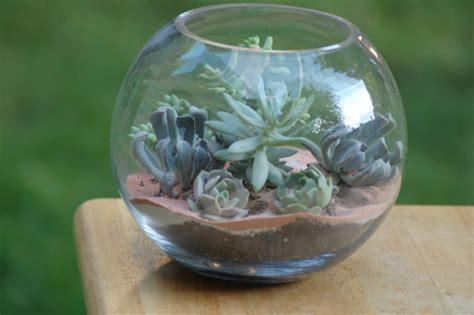 Miniature Dekorasi Terarium Garden Glazzing how to make your own succulent terrarium centerpieces